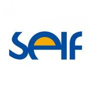 SELF Electronics Co., Ltd.