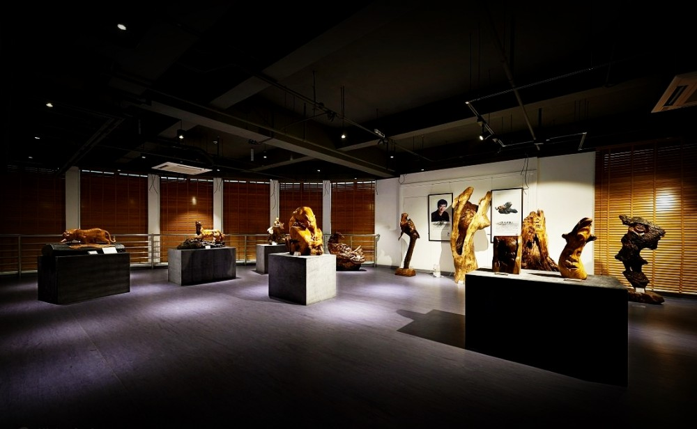 LED Track Lights for Museums, Galleries, Hotels, Retail Stores