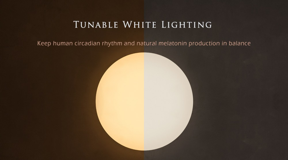 Tunable White LED Ceiling Light