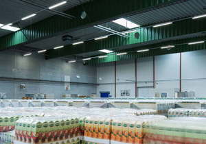 Smart LED Tri-Proof Lights for Industrial, Warehouse, Food Processing Facilities