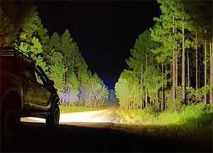 Livid LED Driving Lights for Trucks and Cars Put Benchmark Performance Within Reach