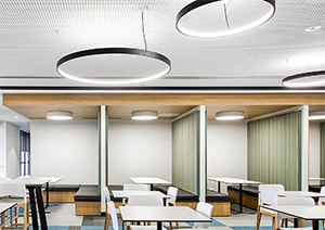 Superloop Ring Pendant Lights Exude Designer Appeal in Restaurants, Showrooms, Galleries